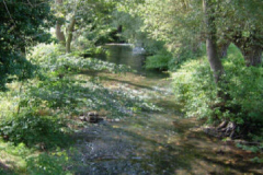 River-Bethune
